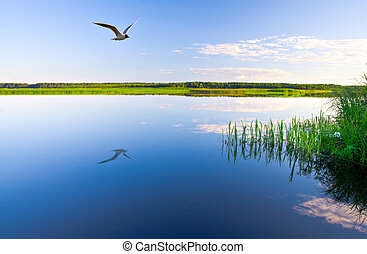 아름다운, 호수