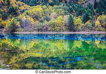 아름다운, 호수, 에서, 가을