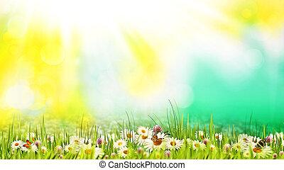 아름다움, 여름의 날, 통하고 있는, 그만큼, meadow., 떼어내다, 제자리표, 배경, fo