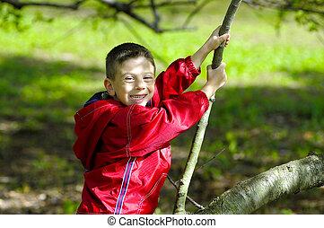 아이, 착석, 통하고 있는, a, 나무