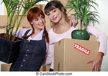 아파트, 소녀, 그들, 이동, 새로운, 룸 메이트