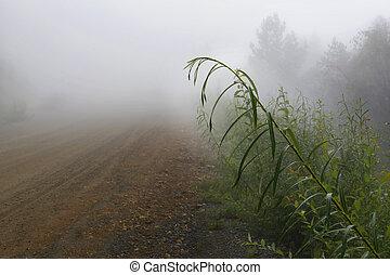 안개가 지욱한, 아침, 에서, 그만큼, countryside., 시골길, 에서, 그만큼, 아침, 안개