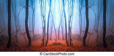 안개가 짙은 숲