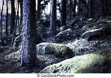 암흑, 숲, 기어 돌아다니는