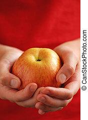 애플, 에서, 손