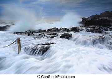 야생의, 파도, 에, 통풍구, 점, 바위 웅덩이