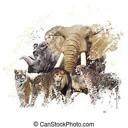 야생 동물, 수채화 물감