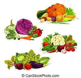야채, 샐러드, 음식, 양배추, 채식주의자