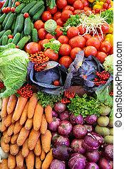 야채, 신선한, 변화, 수직선, 사진