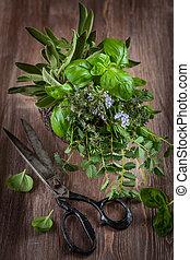 약초, 와, 포도 수확, 정원, 가위