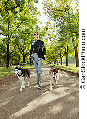 어린 소녀, 와, 2, 개, 쉰 목소리의, 걷기, 완전히, 그만큼, 공원