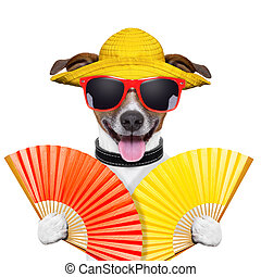 여름, 개