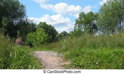 여름, 걷기, 여자, 색안경, 공원, 카메라, 행복한미소