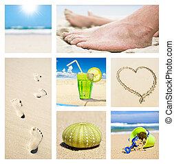 여름, 다른, 콜라주, 장소, 휴일, 바닷가