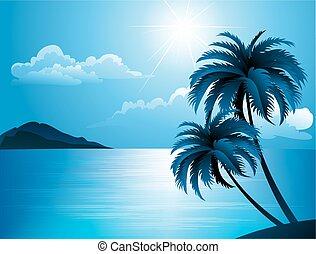 여름, 바닷가, 와, 손바닥 나무