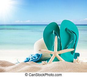 여름, 바닷가, 와, 파랑, 샌들, 와..., 포탄