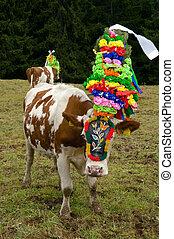 여름, 반환, 가축, 은 목장으로 쓴다, tyrolia, 높은, 오스트리아, 활강의