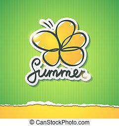 여름, 삽화, 벡터, eps, 10