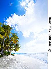 여름, 예술, 해변 휴가, 대양