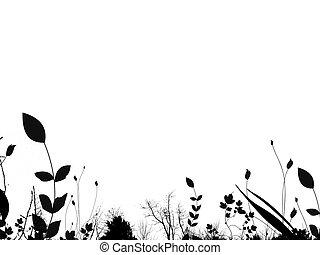여름, 잎, 경계