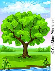 여름, 조경술을 써서 녹화하다, 와, 오래되었던 나무, 와..., 하늘, 삽화