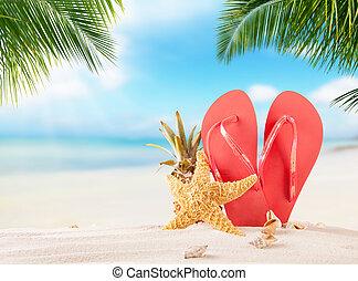 여름, 퍼덕퍼덕하는 소리, 통하고 있는, 해변의 모래 사장