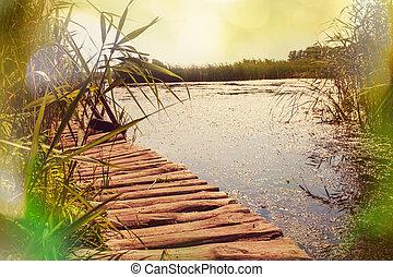 여름, 호수