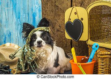 여름 휴가, 혼자서 젓는 길쭉한 보트, 개