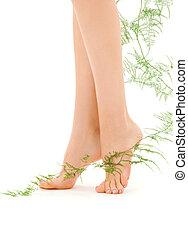 여성, 다리, 와, 녹색의 식물
