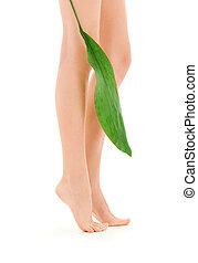 여성, 다리, 와, 녹색의 잎