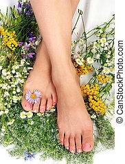 여자, 다리, 와, 꽃