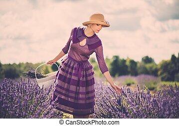 여자, 보랏빛의 드레스, 라벤더 분야, 바구니, 모자