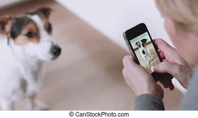 여자, 사진을 찍는 것, 의, 개