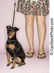 여자, 와, 개, 통하고 있는, leash.