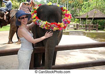 여자, 와..., 아기 코끼리