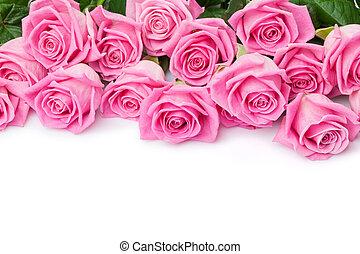 연인 날, 배경, 와, 분홍색의 ros