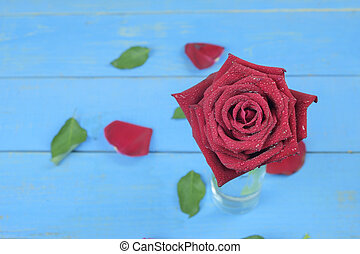 연인 날, 배경, 와, 빨간 장미