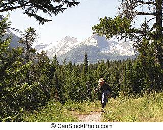 연장자, 능동의, hiker, 통하고 있는, 좁은 길