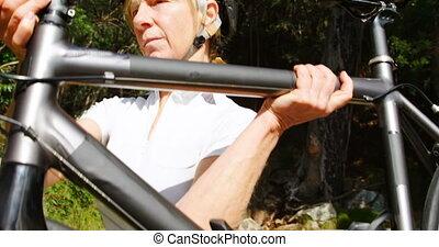 연장자, 시골, 자전거 타는 사람, 나름, 자전거, 4k