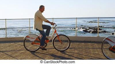 연장자 한 쌍, 승차 자전거, 에, 산책, 4k