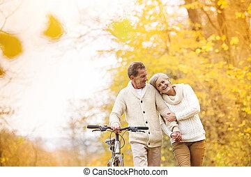 연장자 한 쌍, 와, 자전거, 에서, 가을, 공원