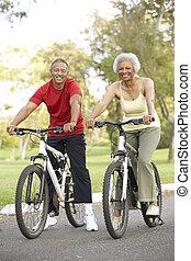연장자 한 쌍, 자전거를 타는 것, park에게서