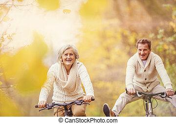 연장자, ridding, 능동의, 자전거, 재미, 가지고 있는 것