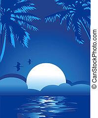 열대적인, 여름, 바다, 주제