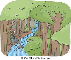 열대 다우림