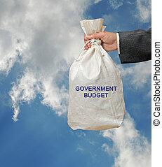 예산, 정부