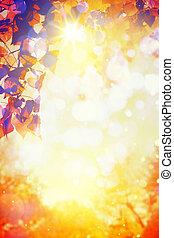 예술, 가을, 부드러운 색, 에서, a, 숲