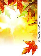 예술, 떼어내다, 가을, 배경, 와, 잎