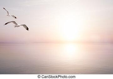 예술, 떼어내다, 아름다운, 빛, 바다, 여름, 배경