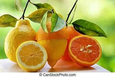 오렌지, slices., 레몬